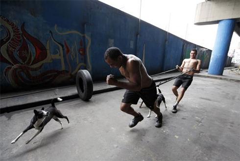 Slum-boxing-10-1302282000.jpg
