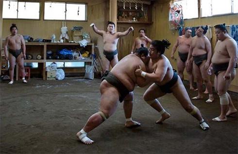 sumo2-1302541200.jpg