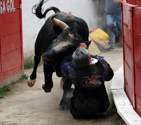 Salvador-1316192400.jpg