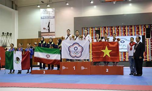 tong-cuc-tdtt-cac-vdv-taekwondo-se-duoc-thuong-dung-quy-dinh-1