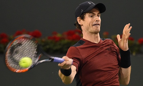 andy-murray-that-bai-trong-tran-ra-quan-indian-wells