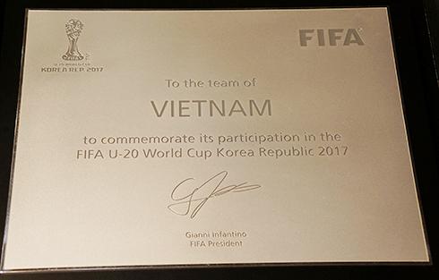 FIFA trao bảng danh vị cho U20 Việt Nam