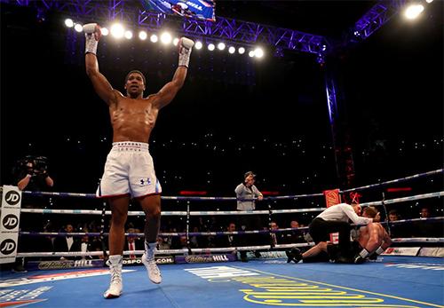 Joshua đang khẳng định vị thế võ sĩ số một thế giới trong làng quyền anh hạng nặng. Ảnh: BBC.