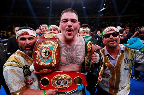 Andy Ruiz từ phương án thay thế cấp tốc trở thành nhà vô địch hạng nặng. Ảnh: Reuters.