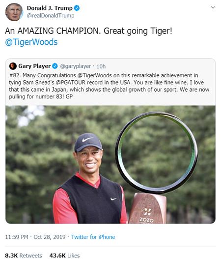 Thế giới golf dậy sóng vì Tiger Woods - ảnh 1