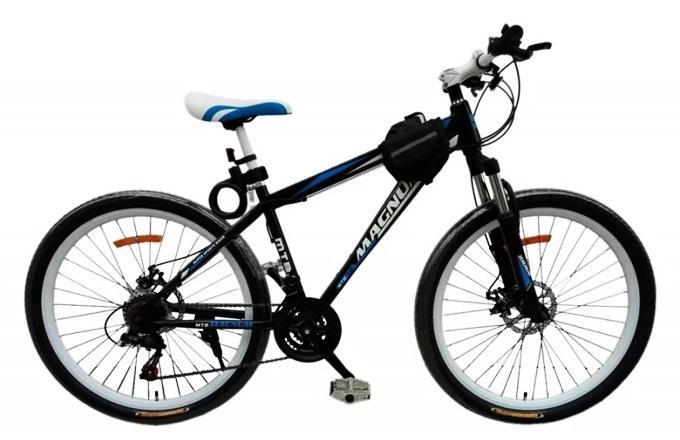 Những mẫu xe đạp thể thao cho người trẻ - ảnh 1