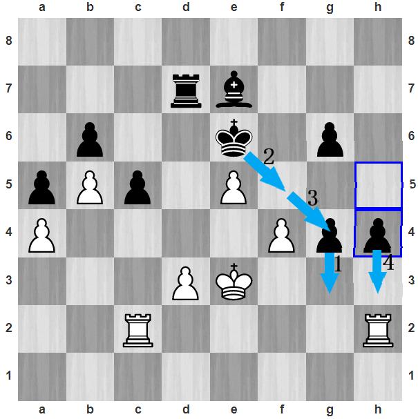 Sau 45...h4, Đinh xin thua. Trắng khó cản Đen thực hiện chuỗi nước đi như g3 - Kf5 - Kg4 - h3. Đen thoải mái đưa vua lên hỗ trợ hai tốt phong cấp, khi Trắng cần bảo vệ các tốt yếu ở a4, d3 hay f4.